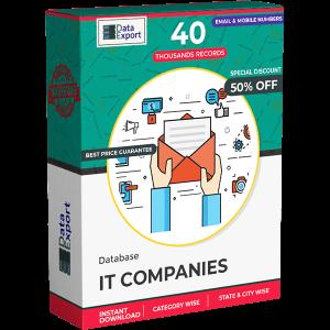 IT Companies Database