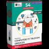 Computer / IT / Telecom Services Database
